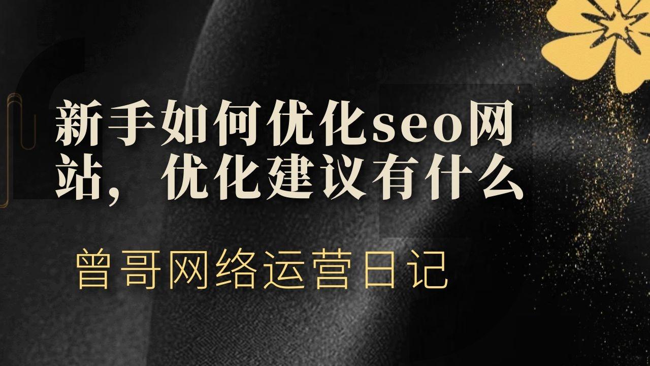 新手如何优化seo网站,优化建议有什么插图